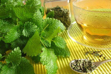 Чай з мелісою для здоров`я