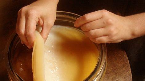 Чайний гриб - користь і шкода для здоров`я, протипоказання до застосування