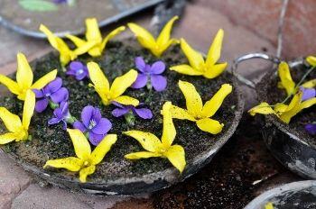 Чим зайняти дитину на дачі: пироги з землі і суп з квітів