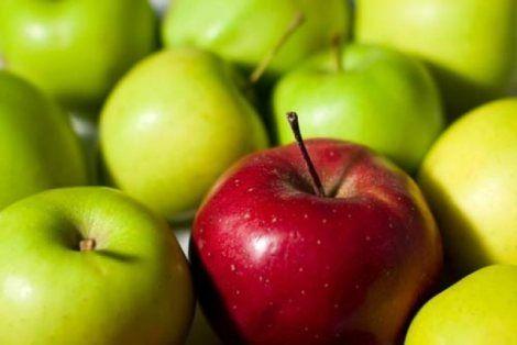 Яблука - корисні властивості - користь і шкода для здоров`я