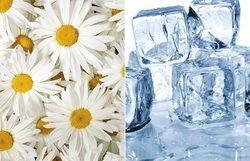 Косметичні кубики льоду
