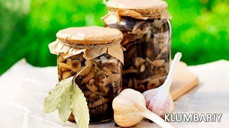 Проста засолювання грибів на зиму