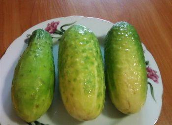 Салат на зиму з перестиглих огірків