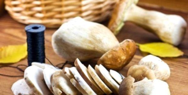 Сушені гриби - ароматний, смачний і корисний запас на зиму