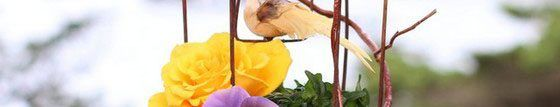 Прикраса альтанки квітами - красива казка своїми руками